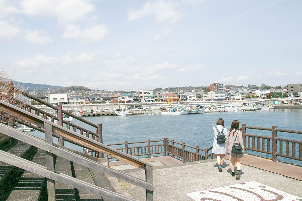 Odawara fishing port (Hayakawa fishing port)