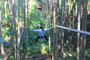 Forest adventure Odawara (external link)