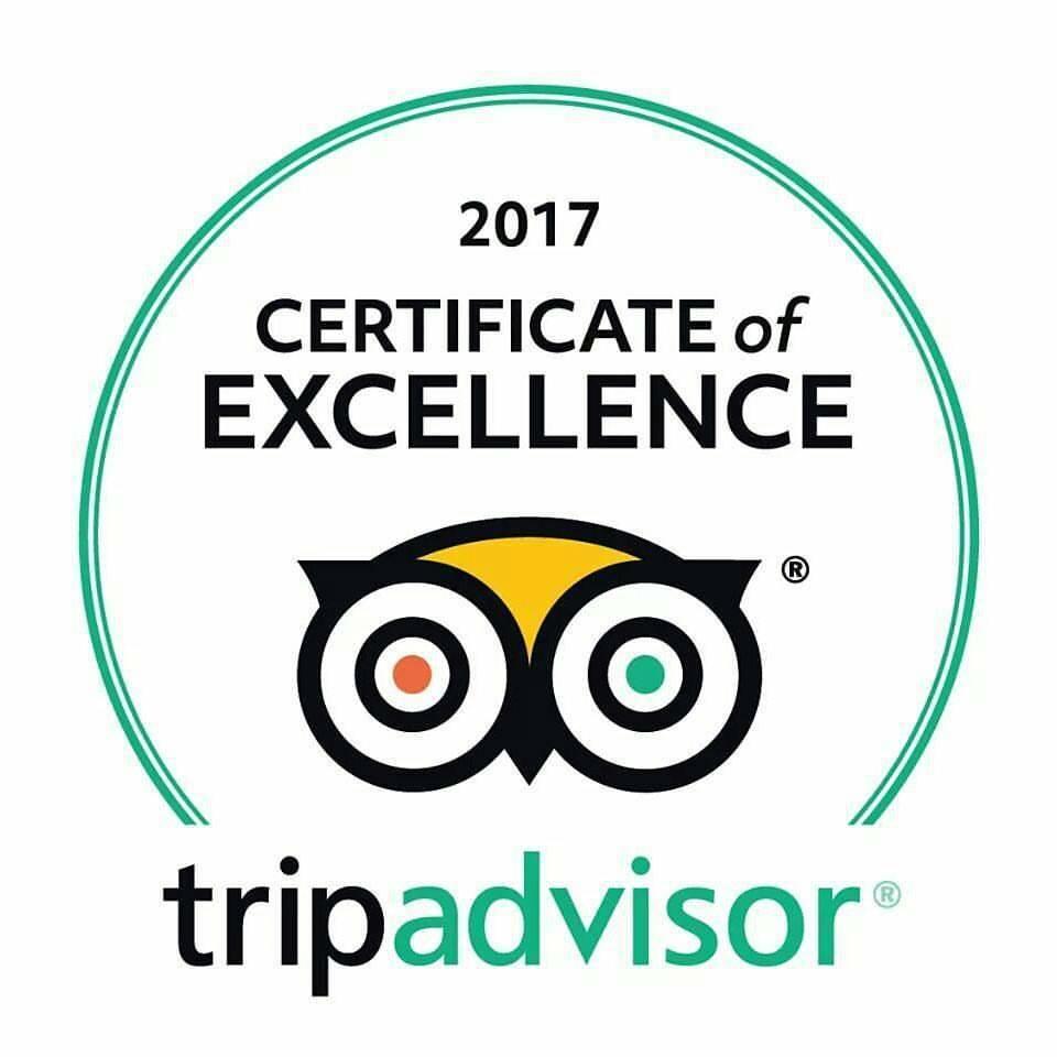 小田原城 TripAdvisor Excellence認定