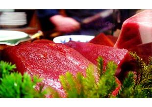 Fatty tuna result