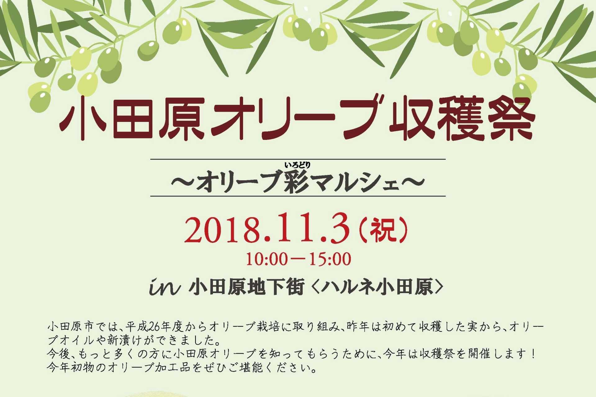 小田原オリーブ収穫祭