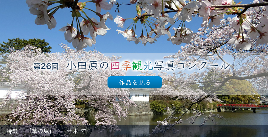 To list of four seasons sightseeing photograph contest works of Odawara